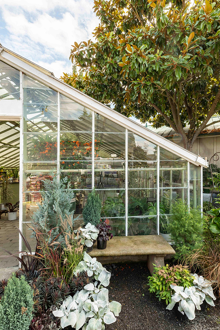 A picture of the greenhouse at our Portland garden center and plant nursery