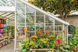 garden-center-greenhouse-small