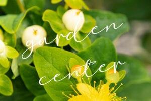 garden-center-home-page