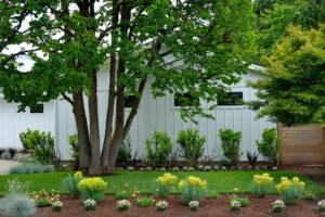 modernist-garden-3