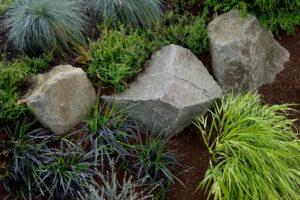 shady-boulder-garden-2