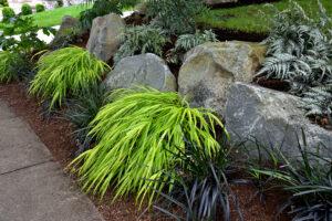shady-boulder-garden-4