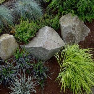 columbia-basalt-boulder-japanese-forest-grass