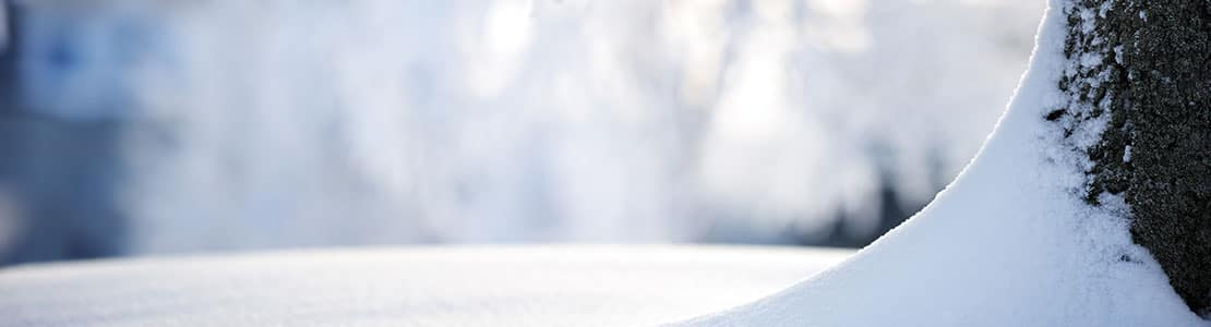 winterization-portland-winter-landscaping-services