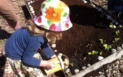 10 Fun Garden Activities for Kids