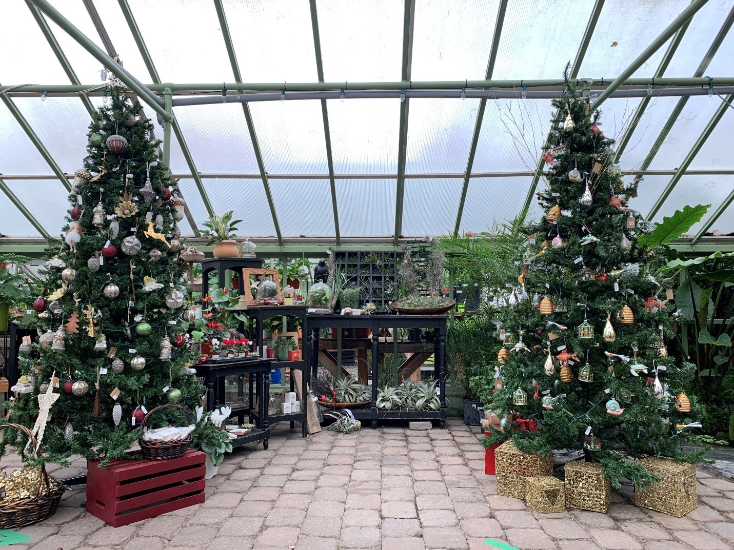 Drake's 7 Dees Garden Center decorated for the holidays